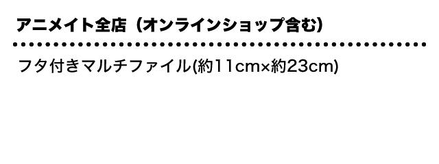 アニメイト全店(オンラインショップ含む):フタ付きマルチファイル(約11cm×約23cm)